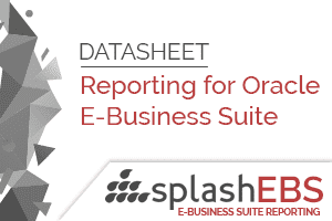 Reporting For Oracle EBS Datasheet 7