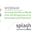 Surviving the Pain of Month End, From the Perspective of an Accountant and Financial Analyst 1