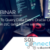 How To Query Data From Oracle Cloud Fusion 21C (and future versions) 4